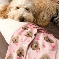 Custom Pet Socks