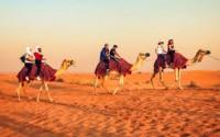 Arabian Holidays Tours