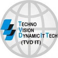 TVD IT LLC