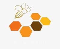 Raw Organic Honey Shop Abu Dhabi