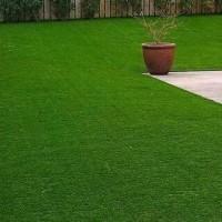 Artificial Grass Installation in Abu Dhabi
