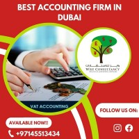 Best Accounting Firm in Dubai   Wise Consultancy