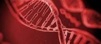 DNA Testing in Dubai | First Response Healthcare