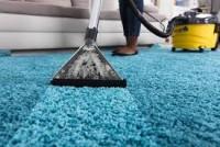 Carpet Cleaning Montrose