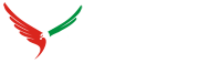 Business Setup in Dubai & UAE - Company Formation in UAE - Eagle wings business consultant
