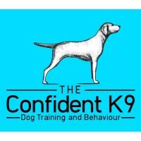 The Confident K9