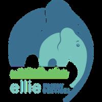 Ellie Family Services - Brainerd