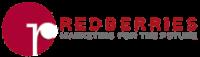 Redberries Web Design Agency Dubai