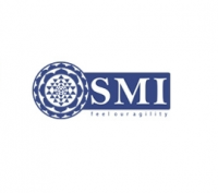 SMI Group LLC