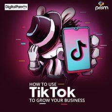 Best TikTok Advertising Agency in Dubai for Businesses