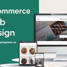 Web design services Dubai | M A Q Computer LLC Services